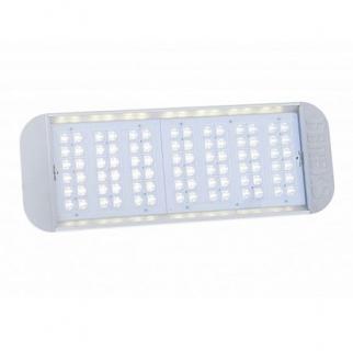 Светодиодный светильник уличный ДКУ 07-170-850-К15